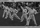 Juniors performing Pinan Nidan Kata